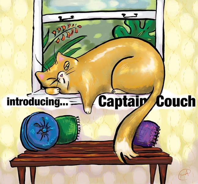 captain couch cat children's illustration portland