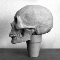 Sculptural study of Asian-derived female skull.